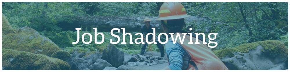 09-job-shadowing