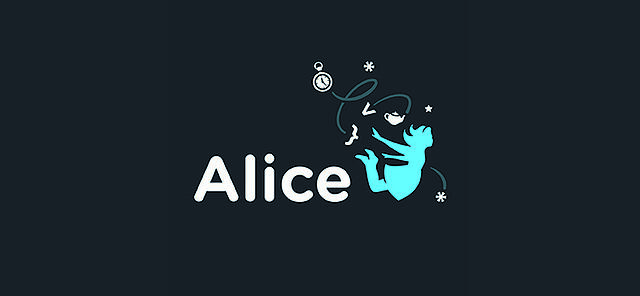 alice-programming.jpg