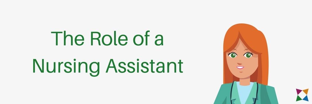 nursing-assistant-lesson-plans-high-school-1-role