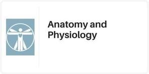 catalog-anatomy-physiology