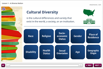 Curriculum to teach about cultural diversity issue in healthcare