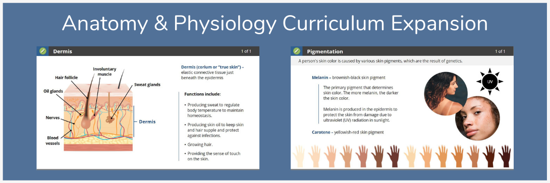 anatomy-physiology-curriculum-expansion