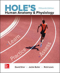 holes-human-anatomy-physiology
