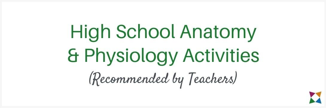 4 Best High School Anatomy and Physiology Activities (Recommended by Teachers)